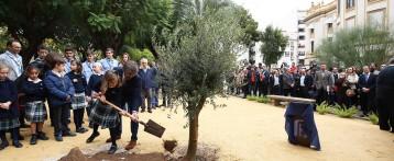 La Diputación de Alicante potencia la reforestación en su 'agenda verde' para propiciar una transformación ambiental en la provincia