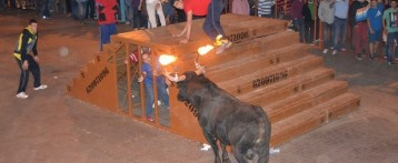 L'Ajuntament de València prohibeix el bou embolat i elimina les subvencions taurines