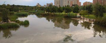 """Las lluvias registran en Alicante y San Juan hasta 60 l/m2 durante las pasadas 24 horas y obliga a poner en marcha el parque inundable """"La Marjal"""""""